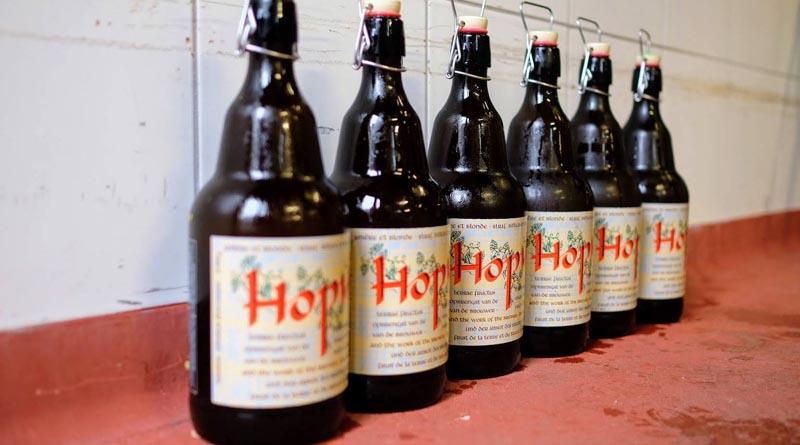 Cerveza belga Hopus